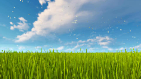 Green grass and cloudy sky background Animation