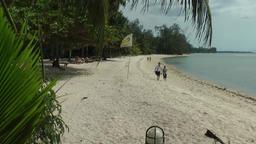 Thailand Ko Samui Island 063 natural beach behind palm leaves Footage