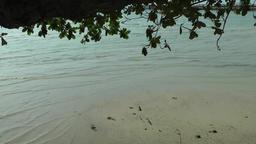 Thailand Ko Samui Island 079 waves flush around a small sandbar Footage