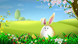 Easter Rabbit (4) Animation