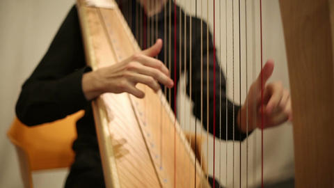 The musician plays the harp Footage