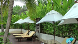 Thailand Pattaya 019 ravindra beach resort, row of sunshades and sun loungers Footage