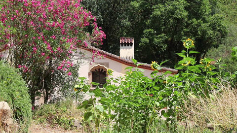 Spanish garden with a house Footage