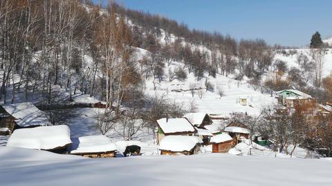 Winter Rural Landscape Scenery Cows Village 4K Footage