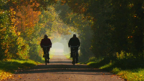 11812 zoom retired couple riding bicycle long colorful avenue autumn Footage