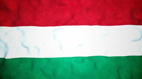 Hungarian Flag Seamless Video Loop Animation