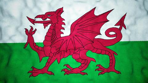 Welsh Flag Seamless Video Loop Animation