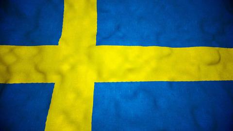Swedish Flag Seamless Video Loop Animation