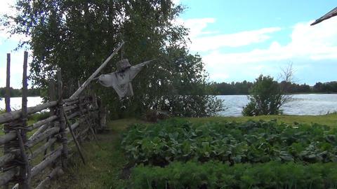 Spooky Scarecrow in Halloween Garden Footage