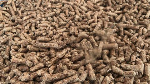 Wood pellets Footage