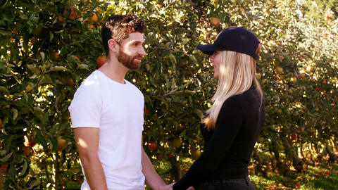 Couple interacting each other in apple orchard Live Action