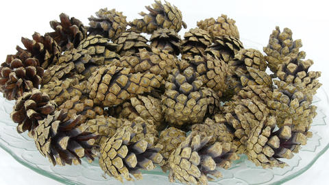 Time-lapse of opening pine cones on a plate, 4K Footage