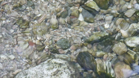 pebbles,fish & gravel under water,reflection on... Stock Video Footage
