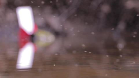 Insects Flying Above A Stagnant Puddles 94 stock footage