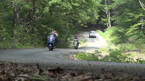 Motorcycles and off-road runs through dense forest and green on a paved road 22b Footage