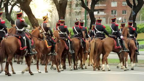 Grenadiers On Horseback Footage