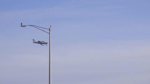 A plane lands near a hawk perched on a lightpost Live Action