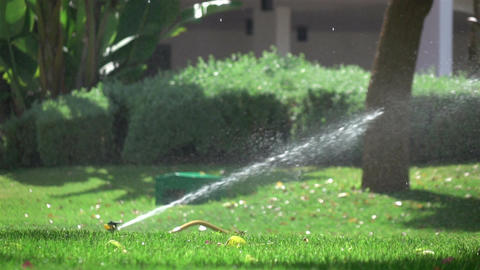 Two videos of watering garden in real slow motion Footage