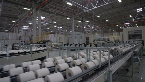 Long Conveyor of Toilet Paper in Manufacturing Process Live Action