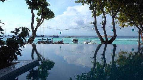 Silhouettes of trees reflected in pool at beach Footage