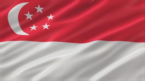 Flag of Republic of Singapore 4K Animation