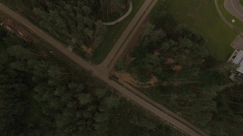 Aerial Panoramic View Road and Huge Pine Forest Footage