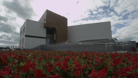 Flower Fields Around Factory on Sunny Summer Day Footage