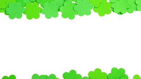 Green shamrocks on white background for st patricks day Live Action