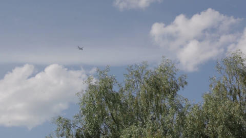 Airplane Over The Trees Footage