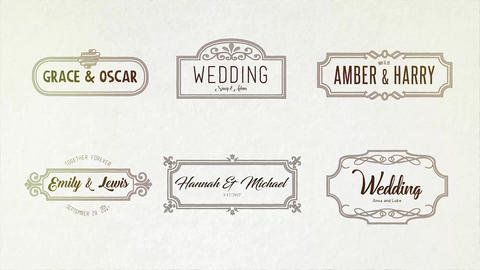 Wedding Handdrawn Titles 36 After Effects Template