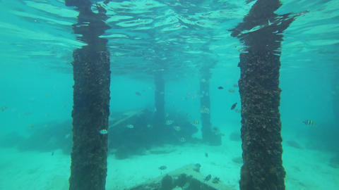 Scuba diving between abandoned concrete pillars Footage