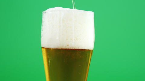 head of a beer pint for st patricks Live Action