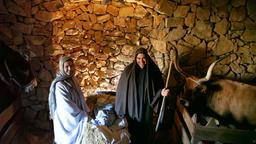 nativity scene holy family baby Jesus virgin Mary Joseph historical reenactment  Footage
