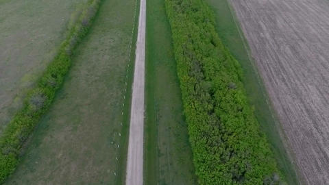 Aerial: long road and line of trees to a farmhouse in the prairies Footage