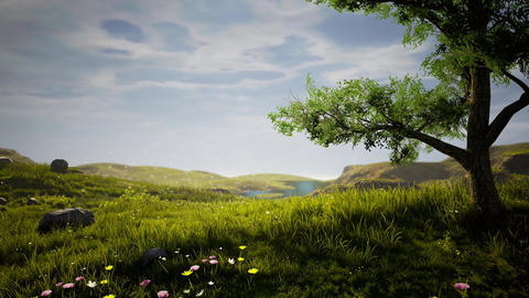 Nature Realastic Background CG動画素材