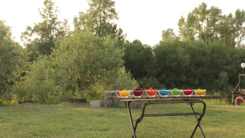 Holi Colored Powder In Bowls long shot 02 Footage