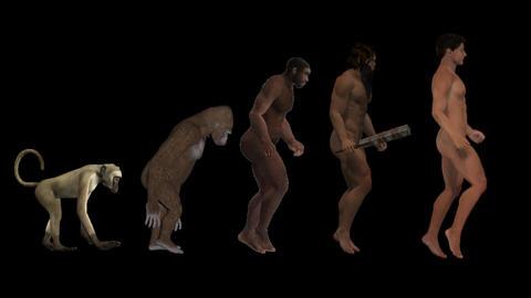 Evolution,alpha channel, classic scheme, animation Animation