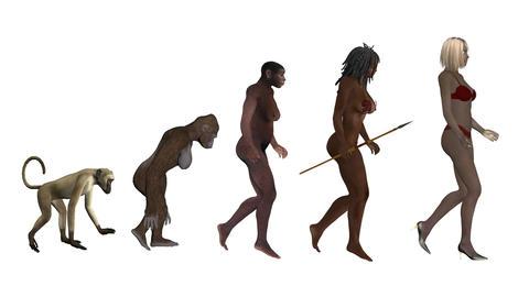 women's evolution, the classic scheme, animation, white background Animation