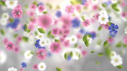 Falling Flowers (3) Animation