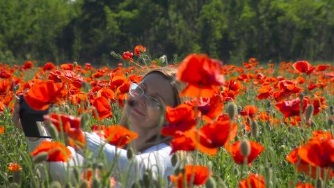 A flowering poppy field near Krasnodar. Russia Footage
