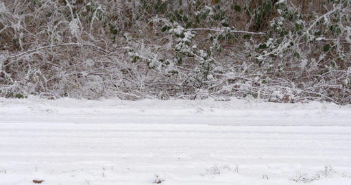 Car stopping on snowy road Footage