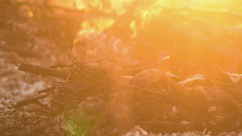 Close view at a glowing charcoal and flame in sun flare Footage