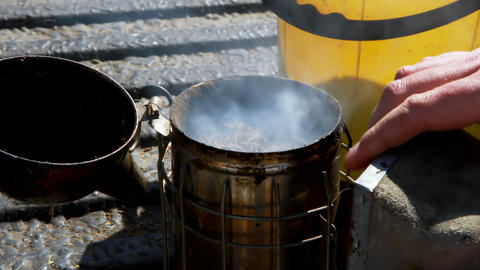 Beekeeper preparing smoker for harvesting in apiary Live Action