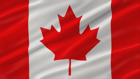 Flag of Canada 4K Animation