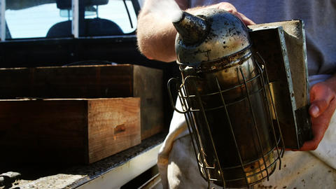 Beekeeper preparing bee smoker on truck Live Action