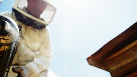 Beekeeper smoking the honeycomb of a beehive using a hive smoker Live Action