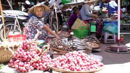 Vietnam Phú Mỹ district villages 070 market woman offers fruits Footage