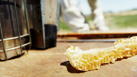 Hive smoker and beeswax on beehive Live Action
