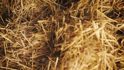 dolly shot of a pile of straw Footage