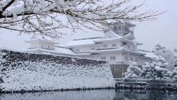 Toyama Castle ruins park DSCF9237 Footage